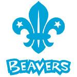_Beaver_blue_stack